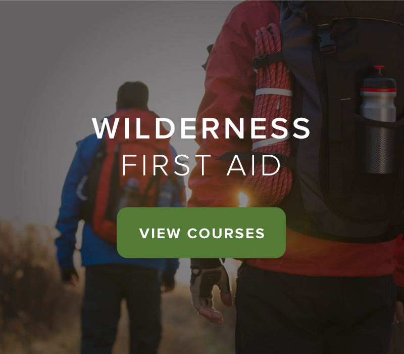 Back40-wilderness-first-aid-view-courses