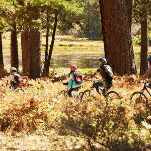 back40 fall wilderness first aid biking adventure